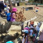 Νηπιαγωγείο Παιδικά Πατουσάκια | Φωτογραφίες | Εκδρομή Riverland 01